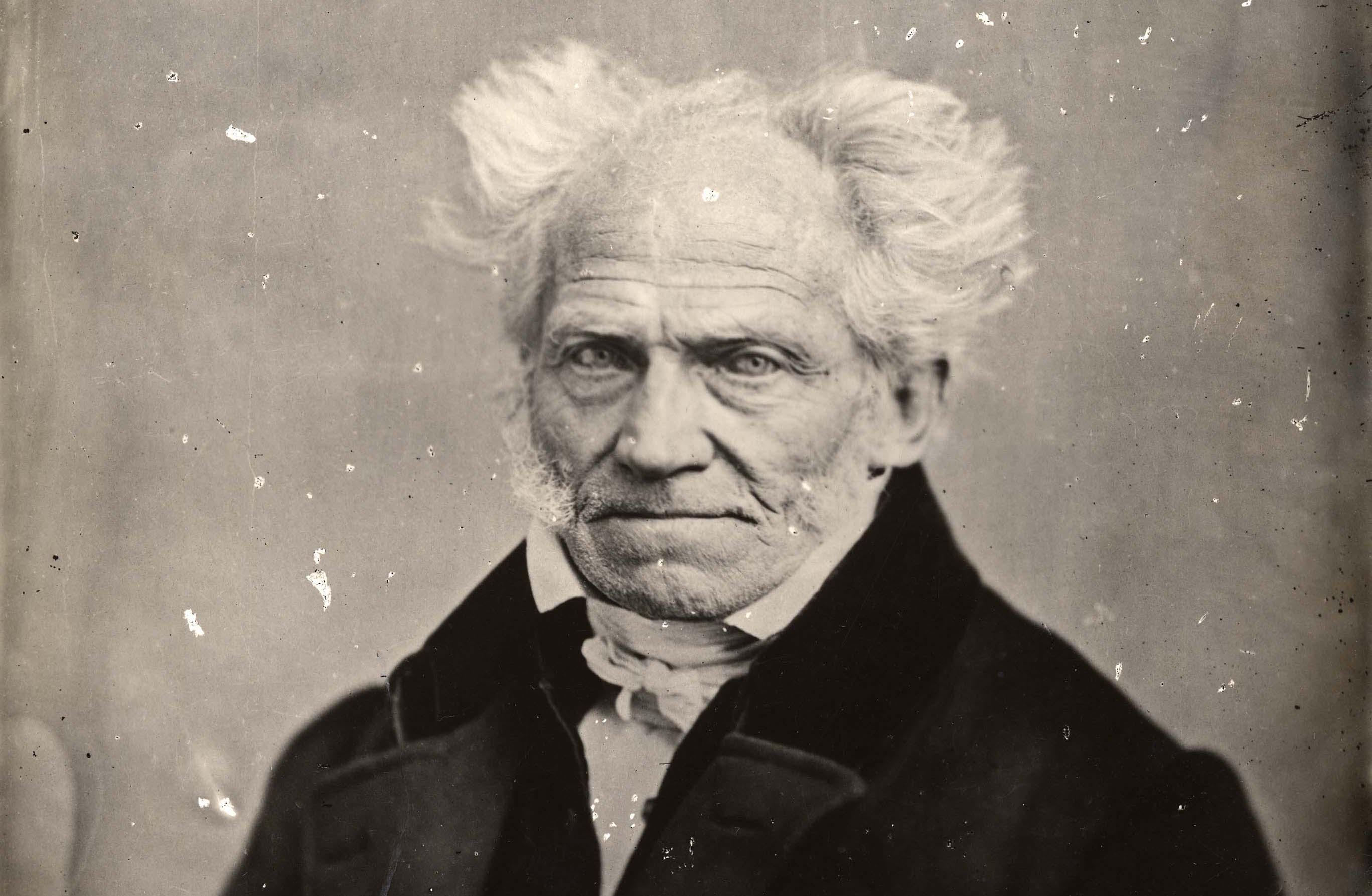 schopenhauer essay on love